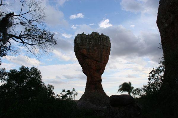 Taça - Parque Estadual de Vila Velha