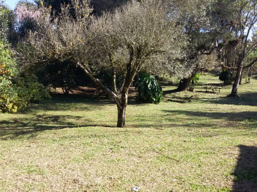 LOTE COLONIA MURICI