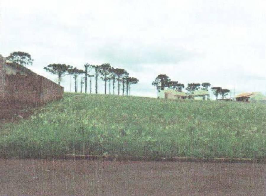 Venda - Terreno - 450m² - NOVA AURORA
