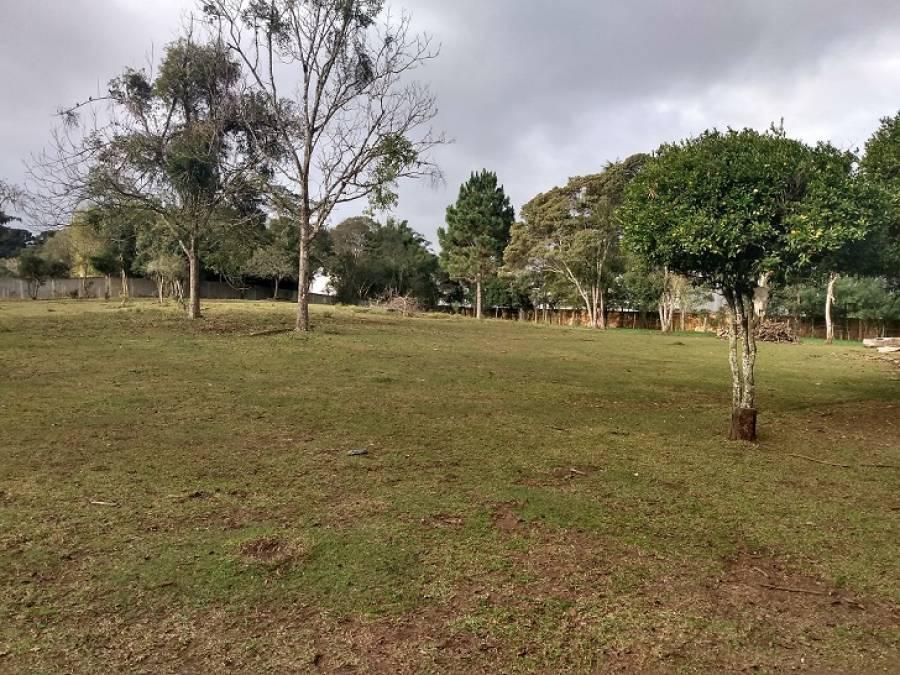 Área na Borda do Campo